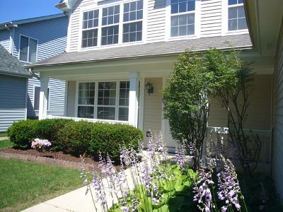 Plainfield Single Family Home New: 14135 South Lakeridge Drive