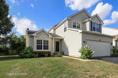 Round Lake Single Family Home New: 249 Spring Valley Way