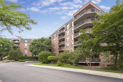 Naperville Condo/Townhouse New: 511 Aurora Avenue #217