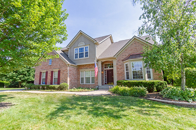 West Dundee Single Family Home For Sale: 1141 Millsfell Court