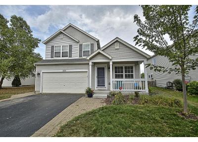Romeoville Single Family Home New: 1630 Clover Court