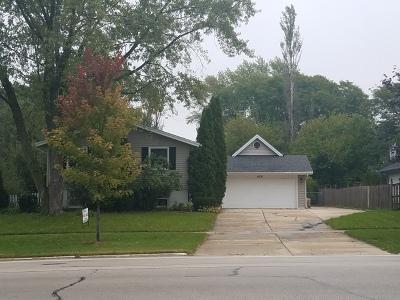 Schaumburg Single Family Home New: 425 South Braintree Drive