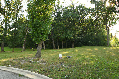 Palos Park Residential Lots & Land For Sale: 12902 South Arbor Court