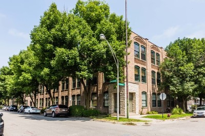Cook County Condo/Townhouse New: 5235 North Ravenswood Avenue #19