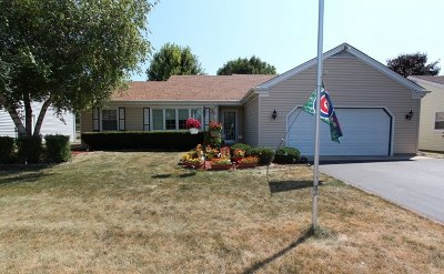 McHenry IL Single Family Home New: $219,000