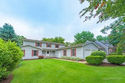 Mc Henry County Single Family Home New: 5616 Marietta Drive