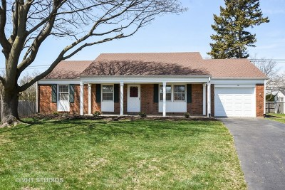 Buffalo Grove Single Family Home For Sale: 6 Regent Court West