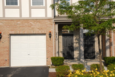 Lake Zurich Condo/Townhouse New: 260 Rosehall Drive #210
