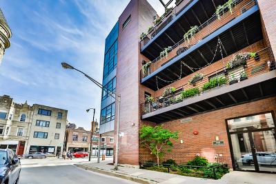 Condo/Townhouse For Sale: 808 North Greenview Avenue #2F