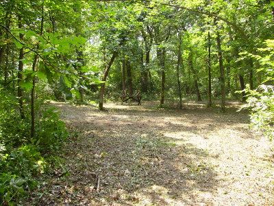 Elburn Residential Lots & Land For Sale: Os810 Autumn Woods Lane