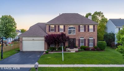 Oswego Single Family Home New: 234 Angela Circle