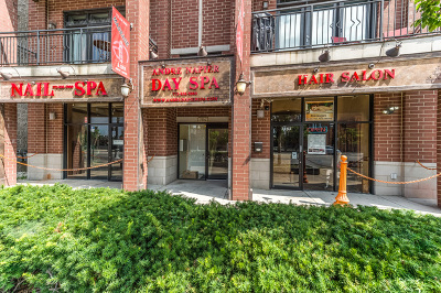 Chicago IL Commercial New: $625,000