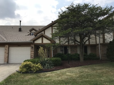 Orland Park Condo/Townhouse New: 9041 Somerset Court