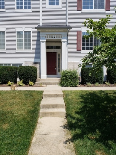 Bolingbrook Condo/Townhouse New: 150 Enclave Circle #D