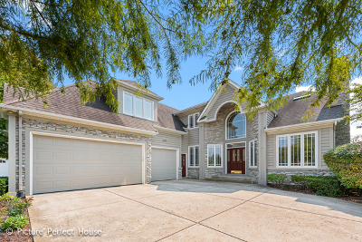 Naperville Single Family Home New: 3571 Scottsdale Circle