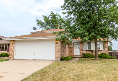 Cook County Single Family Home New: 8809 Obrien Drive
