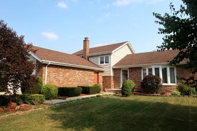 Orland Park Single Family Home New: 9221 Wheeler Drive