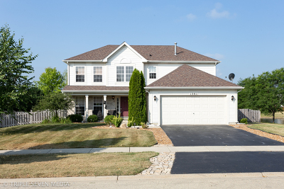 Minooka, Channahon Single Family Home For Sale: 1301 Clifton Drive