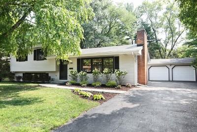 Naperville Single Family Home New: 324 Tamarack Avenue