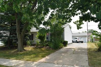 Romeoville Single Family Home New: 313 Haller Avenue