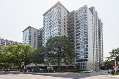 Chicago IL Condo/Townhouse New: $307,900