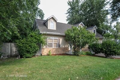 Mc Henry County Single Family Home New: 344 Rand Road