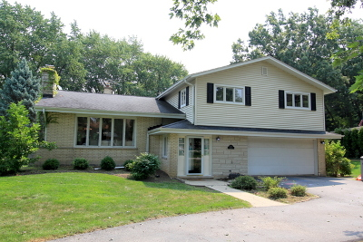 Mount Prospect Single Family Home For Sale: 619 South Glendale Lane