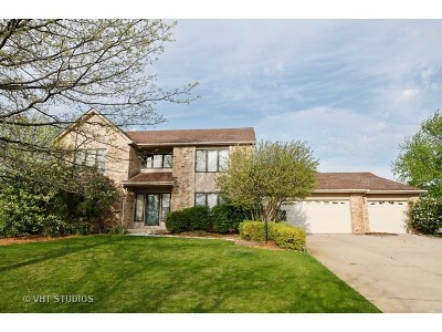 Naperville Single Family Home For Sale: 10722 Wentworth Drive
