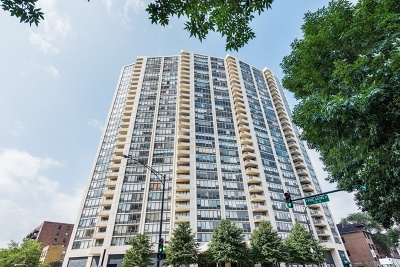 Condo/Townhouse New: 3930 North Pine Grove Avenue #703