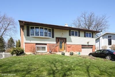 Lombard Single Family Home New: 21w144 Monticello Road