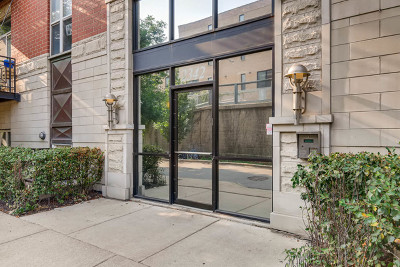 Condo/Townhouse For Sale: 2342 West Bloomingdale Avenue #101