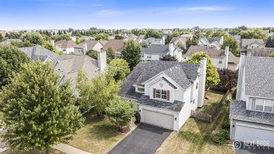 Naperville Single Family Home For Sale: 3424 Fairmont Avenue