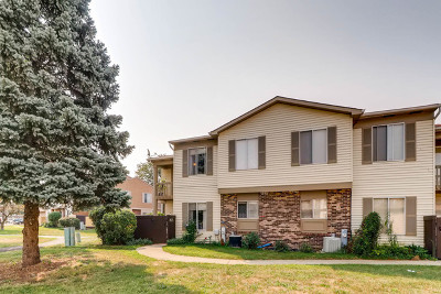 Bolingbrook Condo/Townhouse New: 16 Fernwood Drive #16-S
