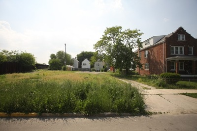 Chicago Residential Lots & Land New: 2238 South Ridgeway Avenue