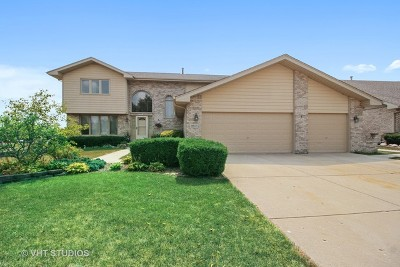 Orland Park, Tinley Park, Evergreen Park, Oak Lawn, Matteson, Olympia Fields, Flossmoor, Frankfort, Country Club Hills, Richton Park, Palos Heights, Palos Park, Palos Hills, Orland Hills, Homewood, Crestwood Single Family Home For Sale: 11803 Brook Hill Court