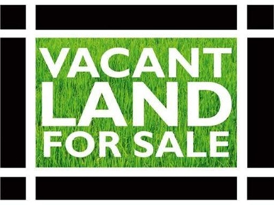 Chicago Residential Lots & Land New: 8050 South Ashland Avenue