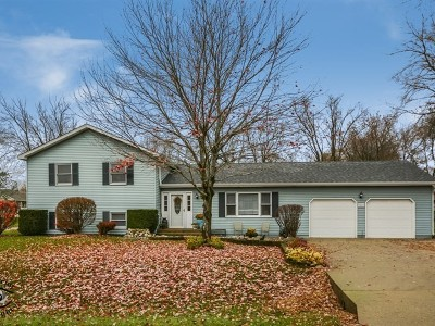 Johnsburg Single Family Home For Sale: 1926 Lakeview Street