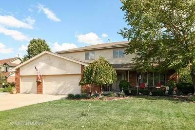 Mokena Single Family Home New: 19431 Kylemore Lane