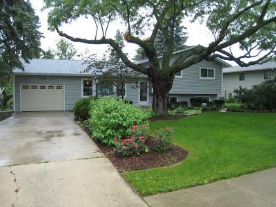 Lisle Single Family Home New: 572 Gamble Drive