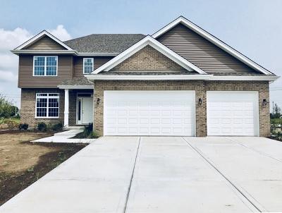 Channahon Single Family Home New: 26500 Glacier Court