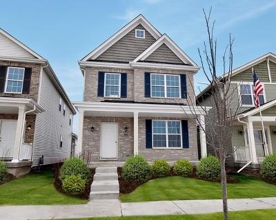 Elburn Single Family Home New: 931 Station Boulevard