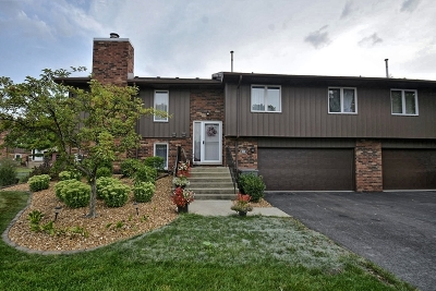 Orland Park Condo/Townhouse New: 8923 Clearview Drive #8923