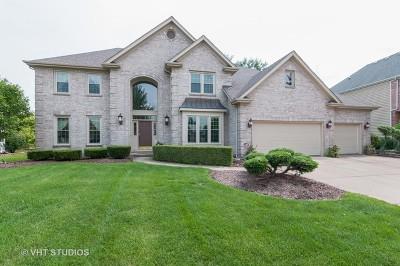 Naperville Single Family Home New: 3344 White Eagle Drive