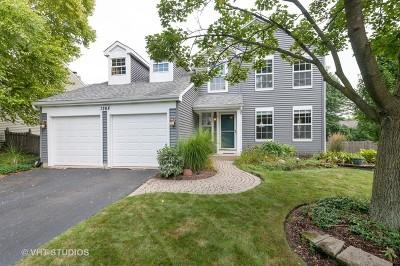 Carol Stream Single Family Home New: 1268 Rose Avenue
