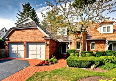 Lake Forest Condo/Townhouse For Sale: 1046 Franz Drive