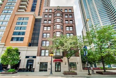 Berwyn, Brookfield, Chicago, Cicero, La Grange, La Grange Park, North Riverside, Oak Lawn, Riverside, Westchester Condo/Townhouse New: 1142 South Michigan Avenue #3AB