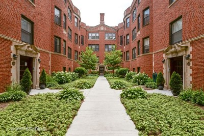 Condo/Townhouse New: 1427 West Elmdale Avenue #2A