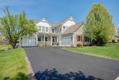 Naperville IL Single Family Home New: $529,900