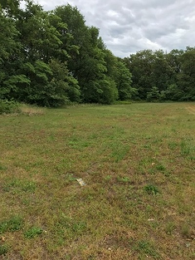 Essex Residential Lots & Land For Sale: 355 Fairway Drive