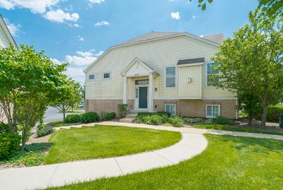 Hanover Park Condo/Townhouse New: 6579 Church Street